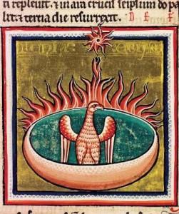 Fenice risorge dalle fiamme