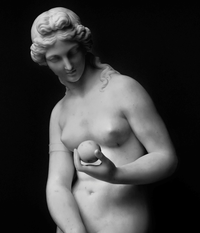 Venus Victrix-roma